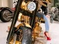 h4-harley-davidson-gold-plated-2-690x426_ahsa-jpg